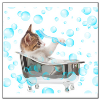Katte Loppeshampoo